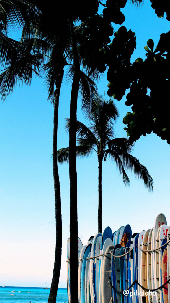 free iphone wallpaper surfboad and palm tree